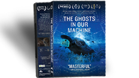 Purchase The Ghosts In Our Machine DVD