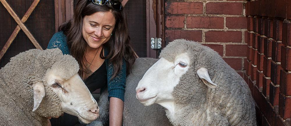 Featured Animal Ambassador – We Animals